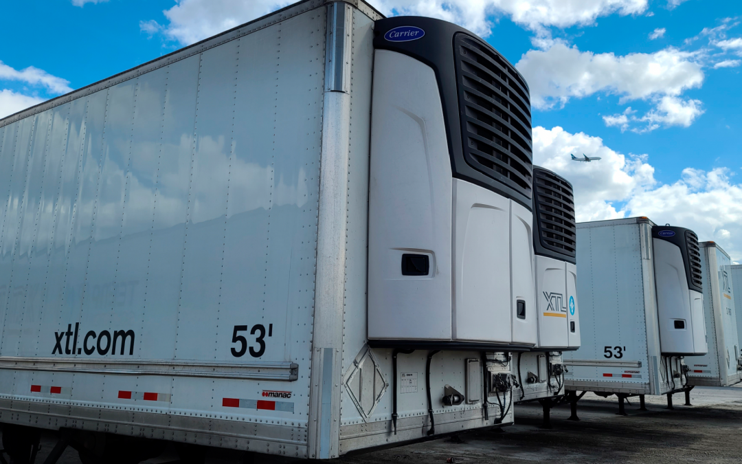 Reefer transport sector experiences consolidations